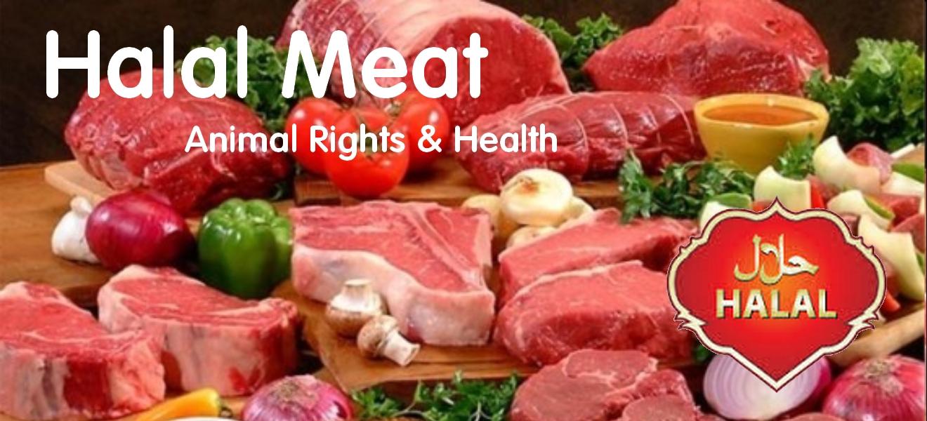 Halal Mean